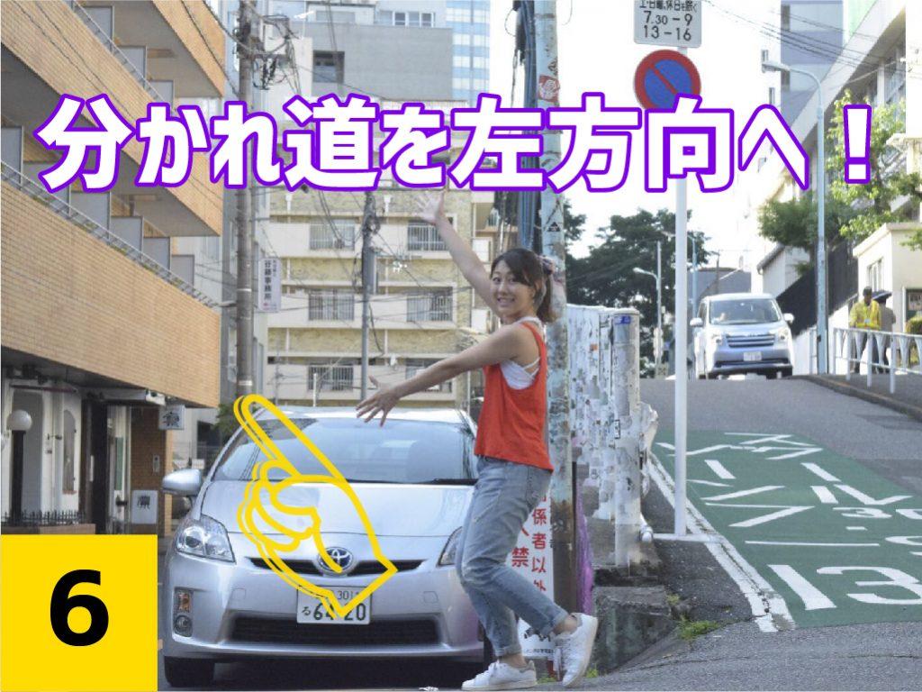 socho_roadmap_6