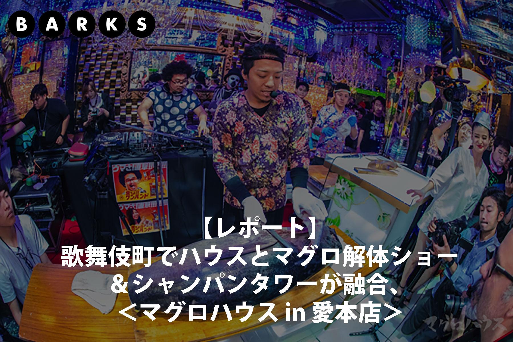 bunner_news_barks