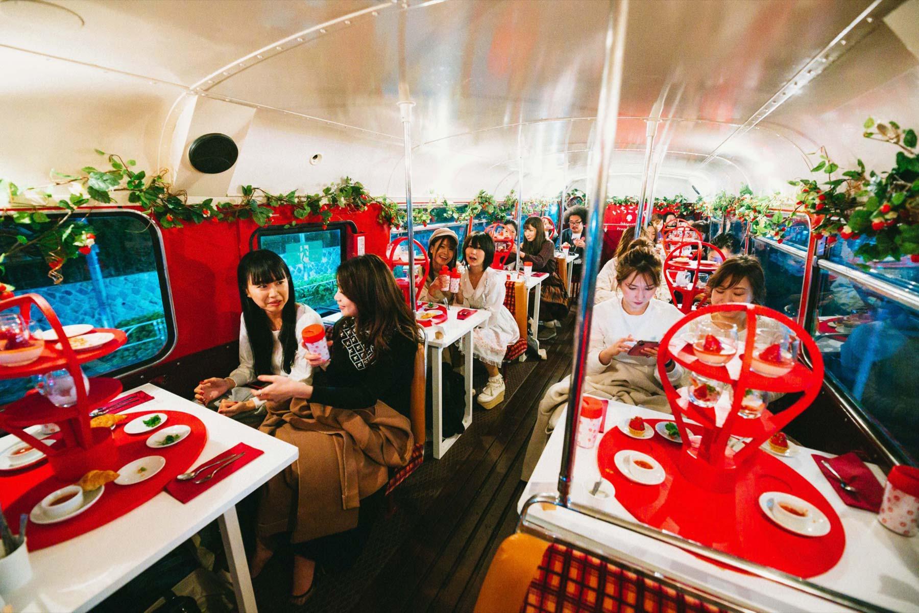 200114_いちごさんバス_BEST20---13-/-18