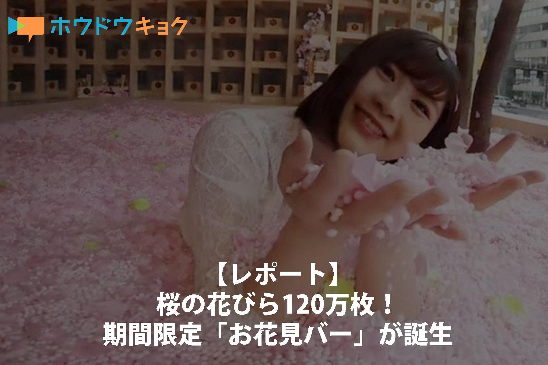 bunner_news_hodokyoku