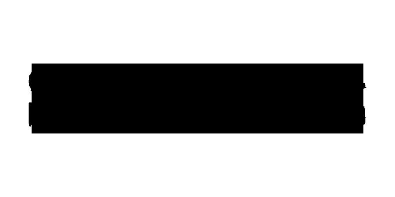 media_sankeibiz_logo