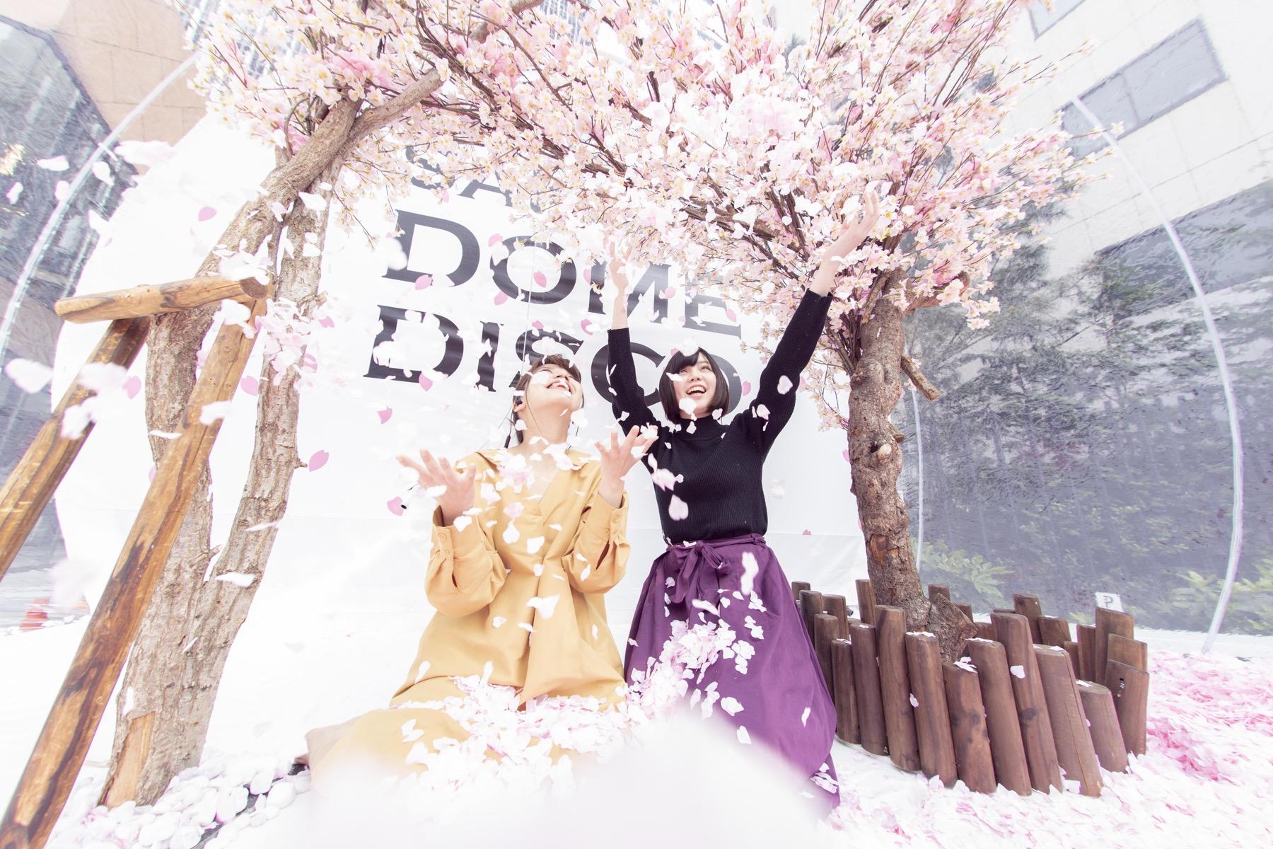 190421_SAKURA DOME DISCO_top20 - 11 / 20